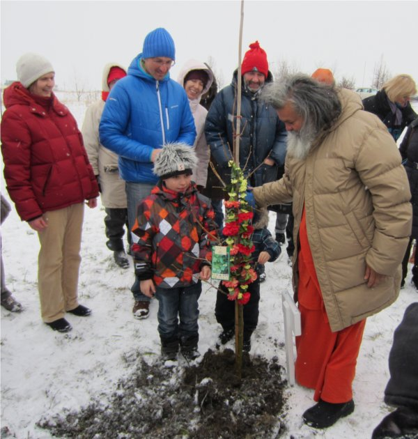 Peace tree planting in Eisenstadt, Austria 2013