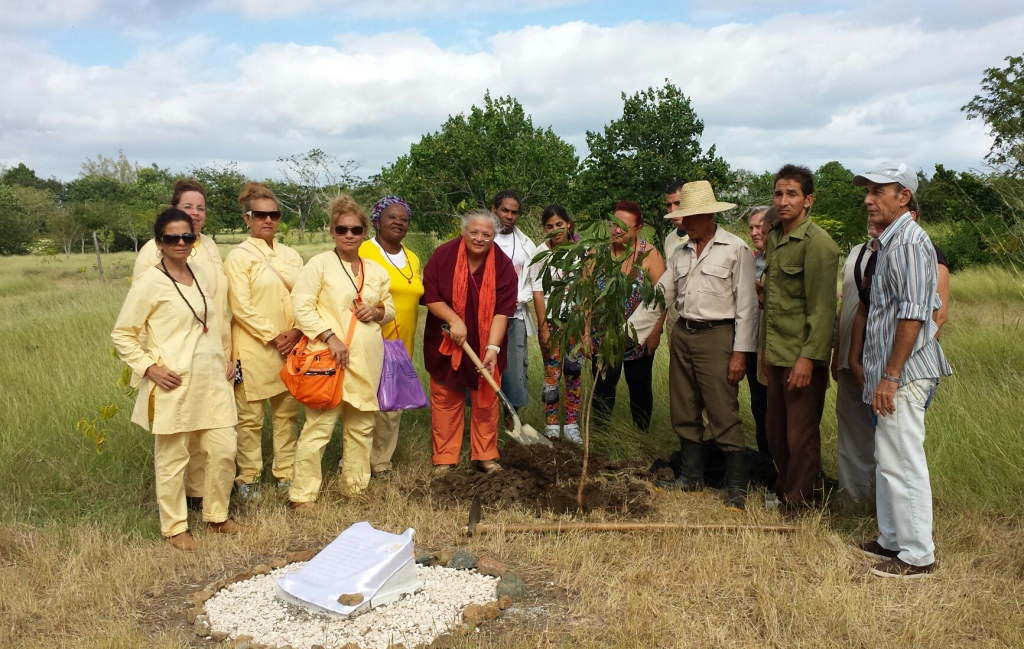 World Peace Tree planted in Cuba 2014