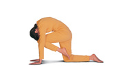 Asanas and Exercises to Increase Flexibility of the Spine